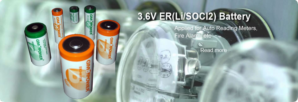 ER(Li/SOCl2) Primary lithium battery